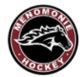 Menomonie Ice Board & Youth Hockey