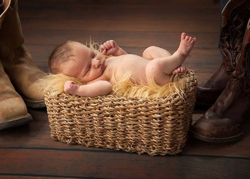 Gallery Image Baby%20In%20Basket.jpg