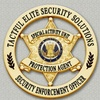 Tactful Elite Security Solutions, LLC