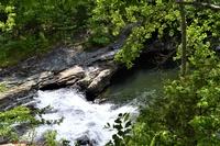 Congo Nature Preserve