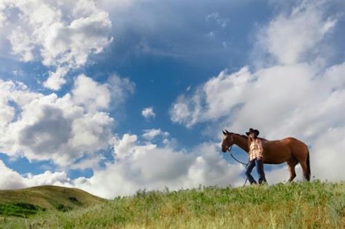 Wild Women Wilderness Horseback Retreats 3 days, 2 nights