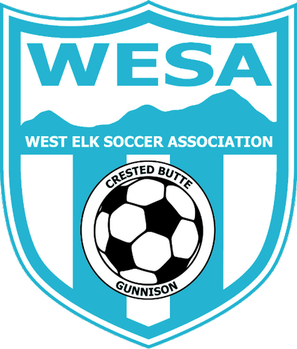 Gallery Image west%20soccer%20%201.png