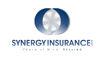 Synergy Insurance Group