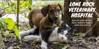 Lone Rock Veterinary Hospital