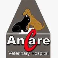 Ancare Veterinary Hospital