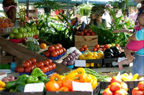 Ocala Downtown Market - Plants, Produce & Much More!