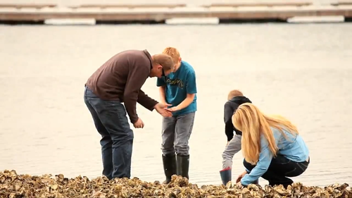 Gallery Image Family_beachcombing.png