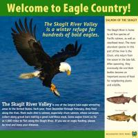 Interpretive sign designs for WA State Parks