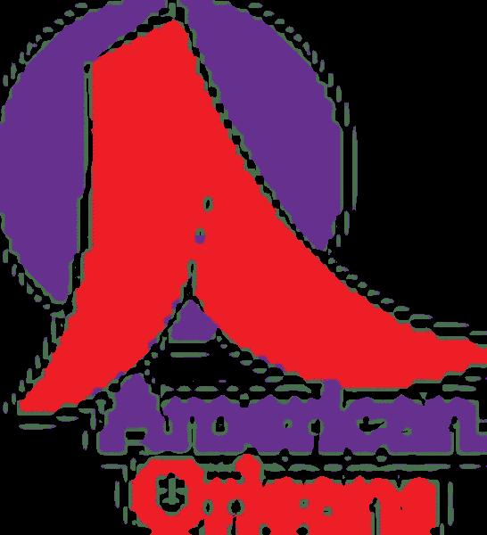 American Orleans Inc.