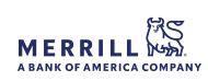 Murty Goodrich Group / Merrill Lynch