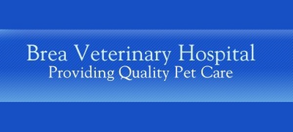Brea Veterinary Hospital