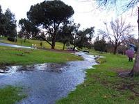 Ted Craig Regional Park
