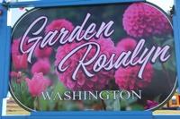 Garden Rosalyn