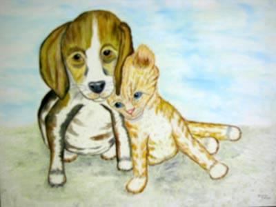 Gallery Image dogcat.jpg