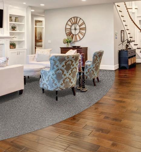 Gallery Image carpet%20hard.PNG