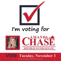 Amanda Chase For Senate