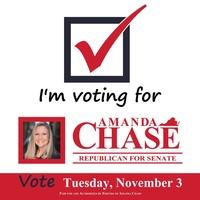 Amanda Chase For Senate