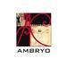 Ambryo Architecture