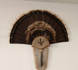 Frontier Arms Taxidermy