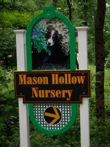 Gallery Image 38912220-mason-hallow-nursery-mason-jpg.jpg