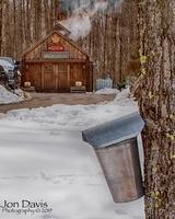 Glastenview Maple Farm