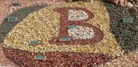 Bedrock ''B''