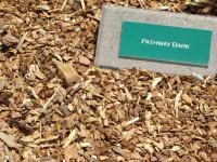 Pathway Bark
