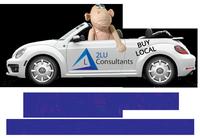 2LU Consultants LLC