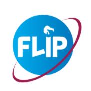 Flip Creative Consulting