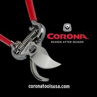 Corona Clipper
