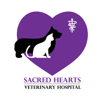 Sacred Hearts Veterinary Hospital