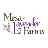 Mesa Lavender Farms