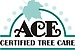 ACE Certified Tree Care