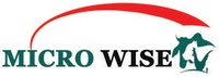 Micro Wise LLC