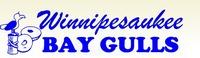 Winnipesaukee Bay Gulls 2