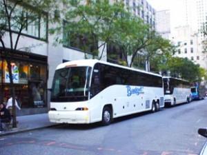 Gallery Image bus3-300x225.jpg