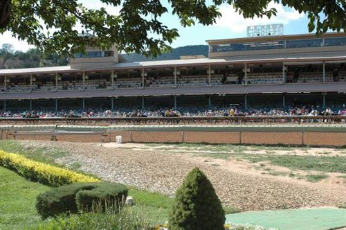 Gallery Image Front%20of%20Grandstand.jpg