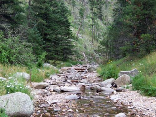 South Fork Creek