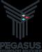 PEGASUS TECHNOLOGY SOLUTIONS