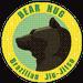 Bear Hug BJJ