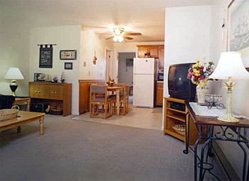 Elmwood one bedroom suite living room