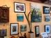A Rhogue Gallery