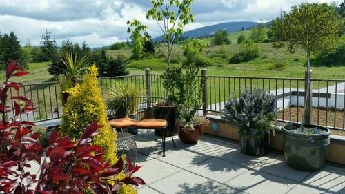 Gallery Image rooftop-garden-at-the-holiday-inn-express-sequim-5_jpg_1024x0.jpg