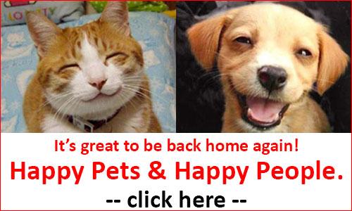 Gallery Image happy-pets-back-home-again.jpg