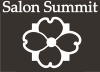 Salon Summit