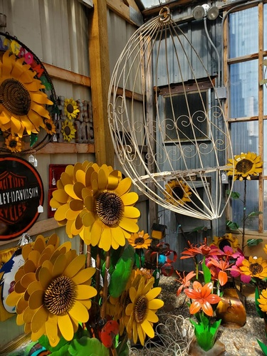 Gallery Image sunflowers.jpg