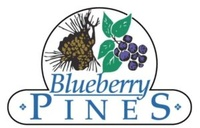 Blueberry Pines
