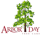 Arbor Day Tree Care