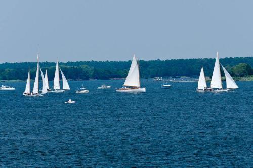 Gallery Image Sailing%20Wilhelm.jpg
