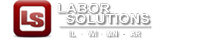 Labor Solutions Professional